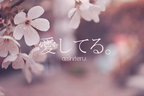 9171090a919447ead992d3f025924e6f--japanese-quotes-japanese-phrases
