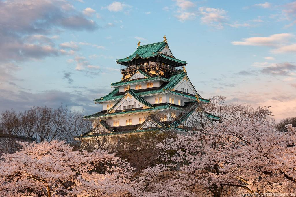 Illuminated in soft twilight, Osaka Castle floats on a sea of beautiful cherry blossoms.